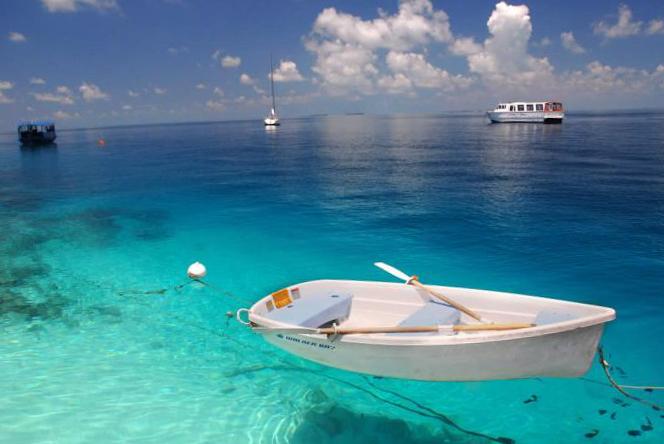 знакомства для совместной поездки на море