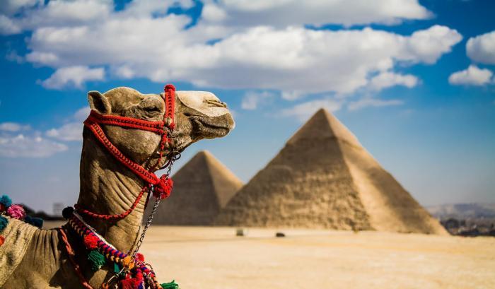 Где лучше отдыхать в Египте в 2019 году