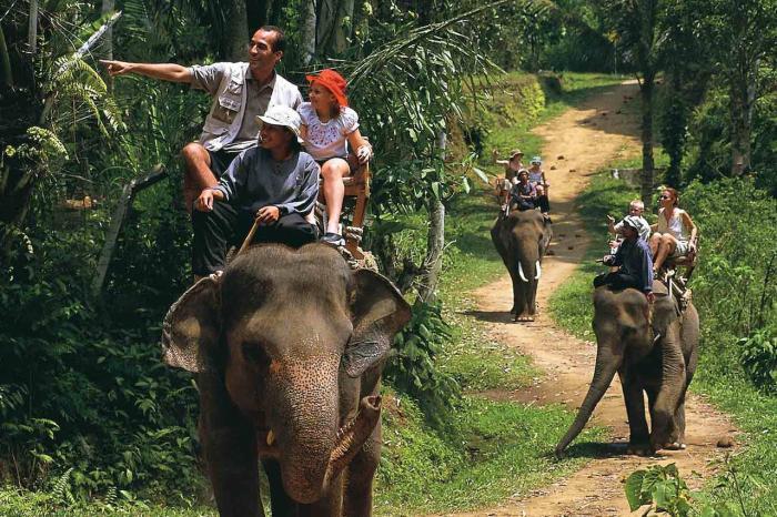 Самуи, Elephant Trekking