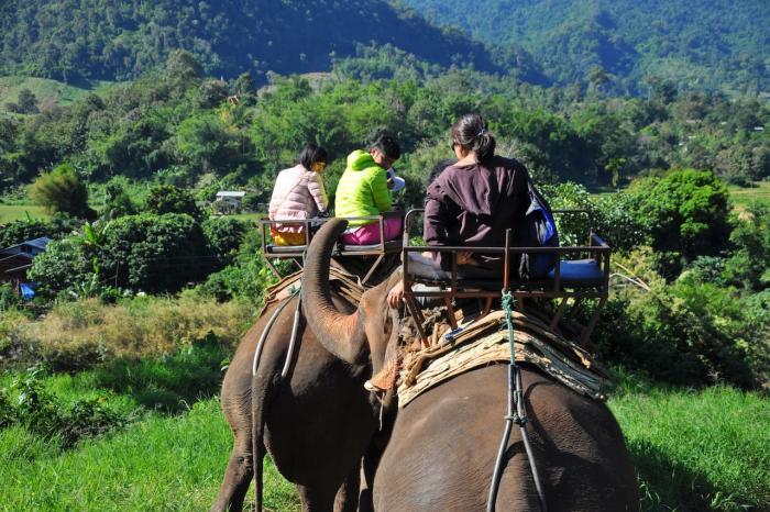 Погода на Самуи в октябре - Elephant Trekking