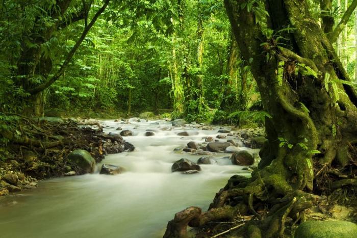 Малайзия, Национальный парк «Ниах»