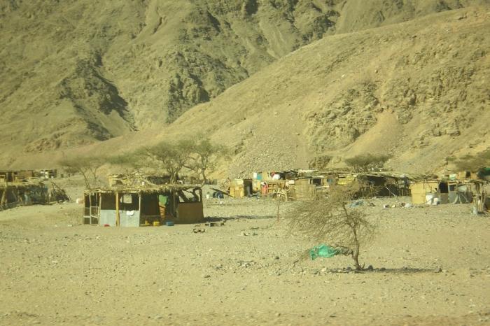 Таба, Деревня бедуинов