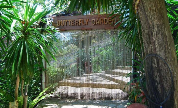 Тайланд, Сад бабочек
