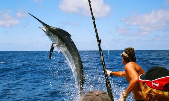Доминикана, рыбалка рыба меч