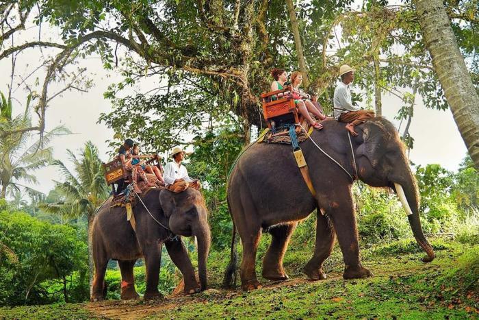 Вьетнам, экскурсии сухопутные