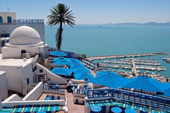 Тунис, Город Сиди Бу Саид окрашен в бело-синие цвета