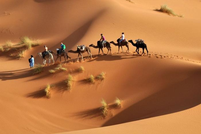 Тунис, Прокатитесь на джипах по пескам Сахары