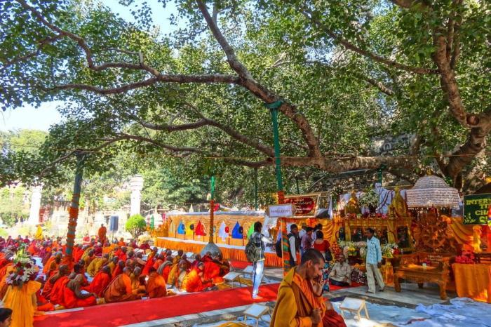 Шри-Ланка, дерево Махабодхи с Священном городе Анурадхапура