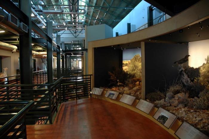 Погода на Крите в апреле - археологический музей Ираклиона