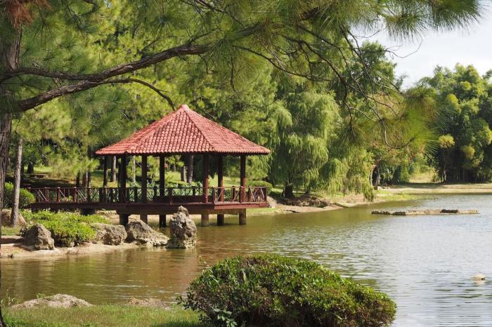 Греция в апреле - Ботанический сад