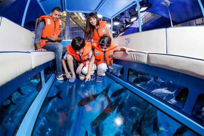 Тунис, Отправляйтесь в морское путешествие на лодке с прозрачным дном