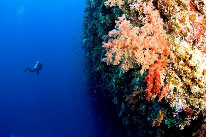 Дахаб, Красное море Дахаба