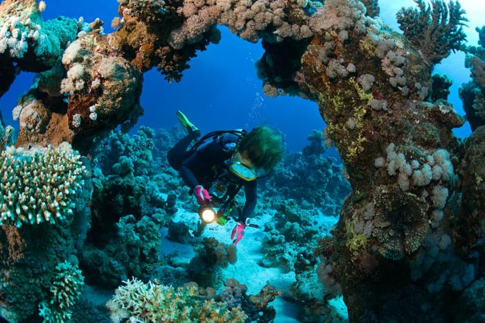 Таба, Коралловые рифы в Табе