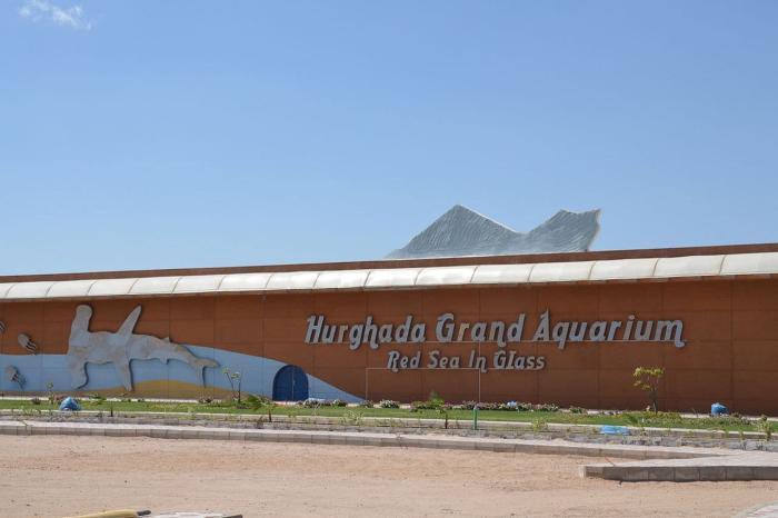 Хургада, океанариум Red Sea