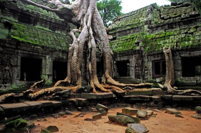 Камбоджа, Та Пром - старинный храм, где снимали фильм про Лару Крофт