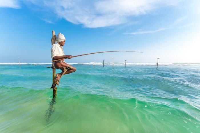 Шри-Ланка, Местные рабыки ловят рыбу сидя на столбах