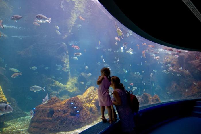 Крит, Критский аквариум