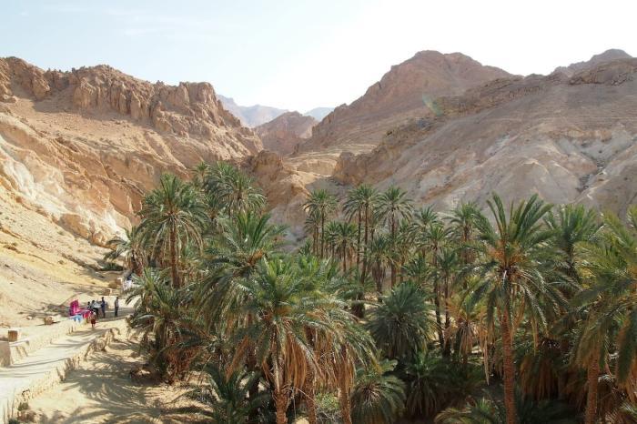Тунис, Оазис в пустыне