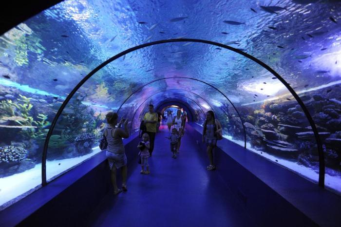 Турция, Океанариум в Анталии