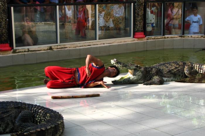 Таиланд Пхукет Зоопарк Пхукета