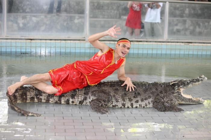 Паттайя для детей, Крокодиловая ферма