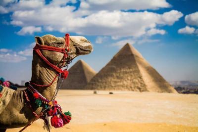 Погода в Египте в ноябре 2020 года