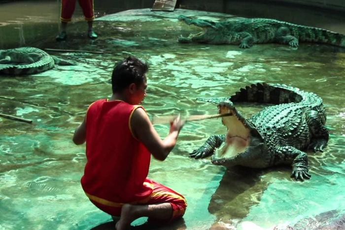 Самуи, Crocodile Farm
